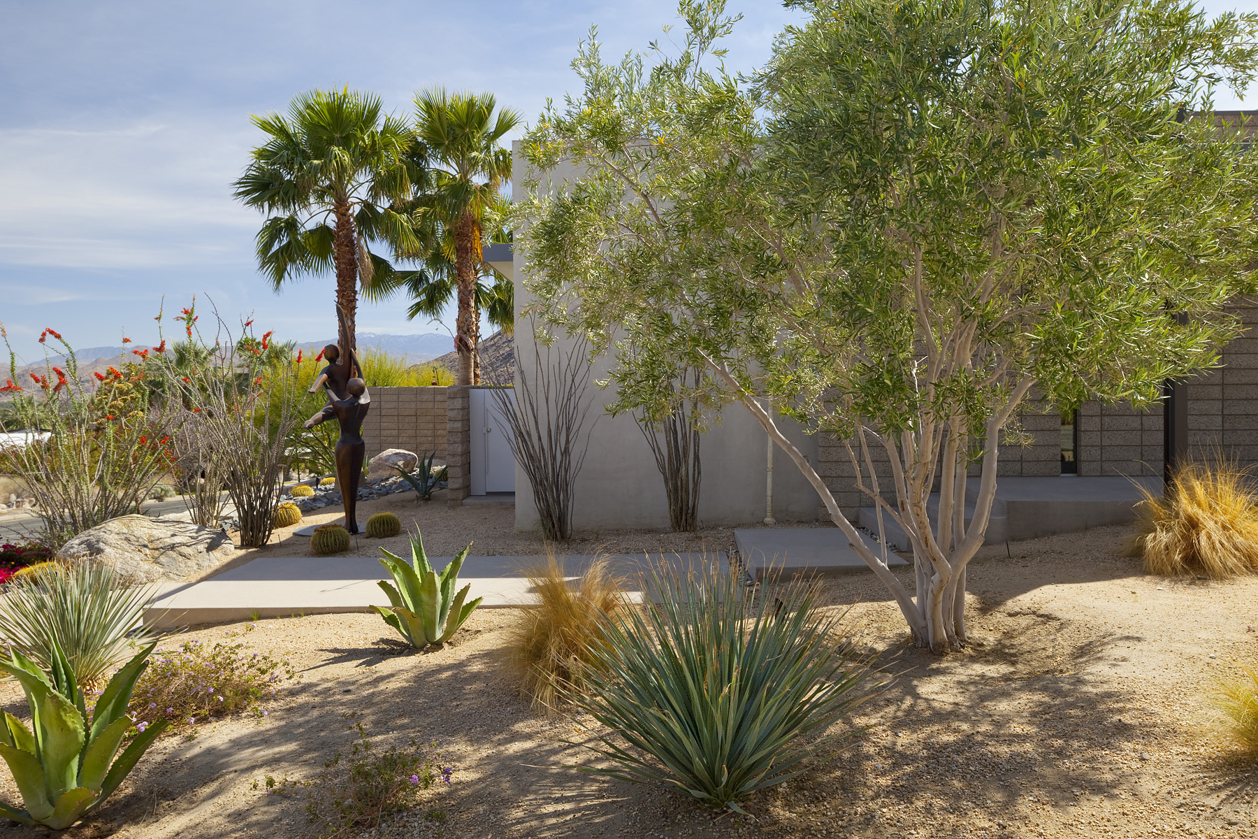Exterior landscape photo, Palm Springs California.  Janie Fitzgerald architectural photography.